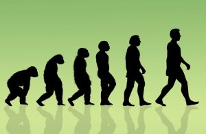 التطور