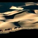 الهجرة النبوية.. العقيدةُ فوق الوطن
