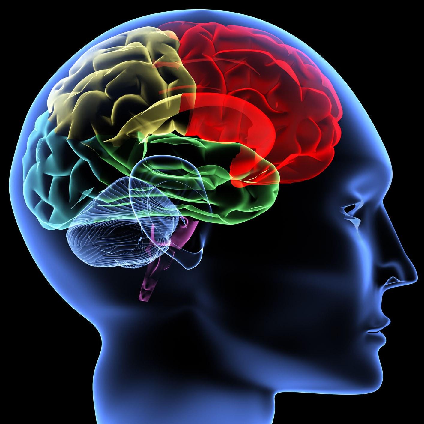 شفرات المخ