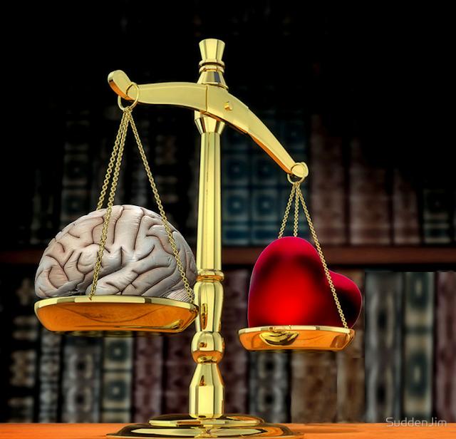 العقل والقلب