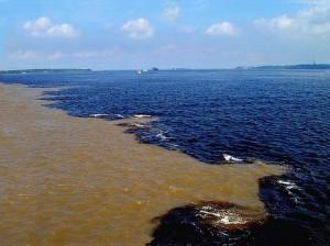 مرج البحرين