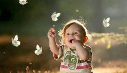 الحواس الإنسانية.. خلقٌ معجز ومسؤوليةٌ عظيمة (الجزء الثاني)