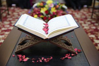 اللغة القرآنية.. متعة التصوير التي تحاكي الواقع!