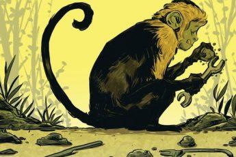بين الإنسان والشامبانزي.. لم تكن المقارنة يوما صحيحة!